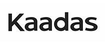 凯迪仕Kaadas